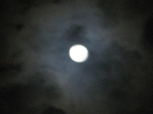 blue moon aug 2012 019